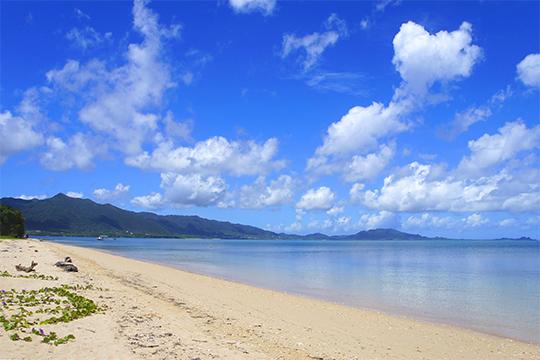 美しい野底のビーチ